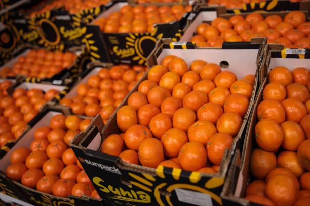 Trading At UK's Largest Vegetable Market As Bad Weather Blamed For Shortages:ニュース(壁紙.com)