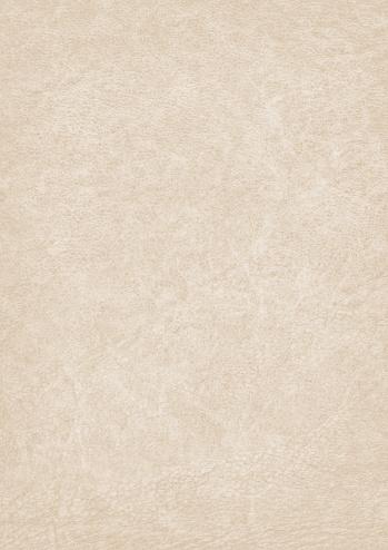 Vellum「High Resolution Parchment Grunge Texture」:スマホ壁紙(10)