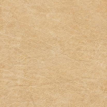 Vellum「High Resolution Antique Parchment Grunge Texture」:スマホ壁紙(9)