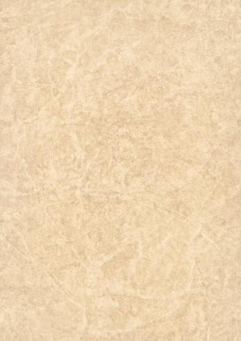 Vellum「High Resolution Beige Antique Animal Skin Parchment Grunge Texture」:スマホ壁紙(18)