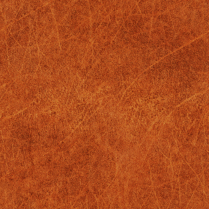 Vellum「High Resolution Old Animal Skin Parchment Seamless Grunge Texture」:スマホ壁紙(19)