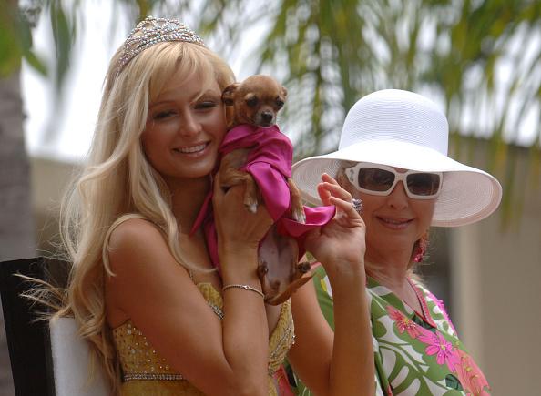 Celebrities「2005 LA Pride Parade」:写真・画像(11)[壁紙.com]