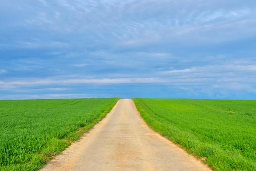 一本道「Country Lane in Spring」:スマホ壁紙(17)