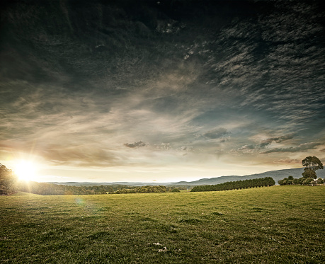 Pasture「Country Landscape」:スマホ壁紙(6)