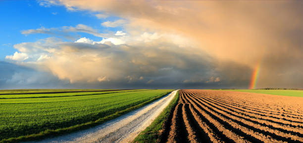 Country Landscape - fields and rainbow in the sunset sky:スマホ壁紙(壁紙.com)