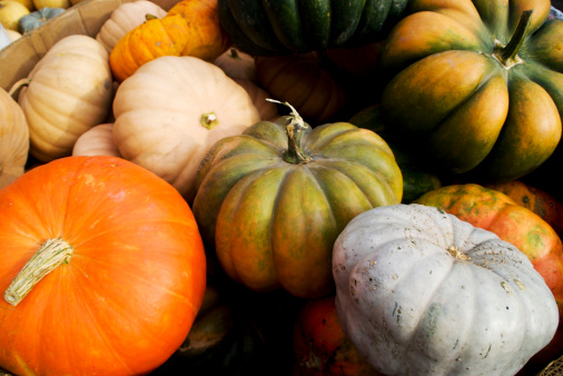 Gourd「Colorful Gourds」:スマホ壁紙(11)