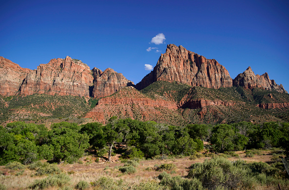 Utah「Utah's Zion National Park Reopens To Visitors」:写真・画像(7)[壁紙.com]