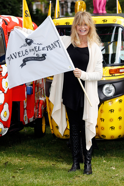 Environmental Conservation「Goldie Hawn Launches 'Travels To My Elephant' A Conservation Campaign」:写真・画像(4)[壁紙.com]
