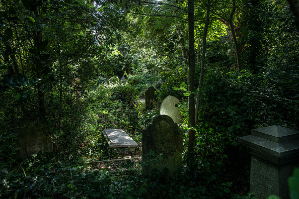 Black History in the UK「Abolitionist History In London's Abney Park Cemetery」:写真・画像(1)[壁紙.com]