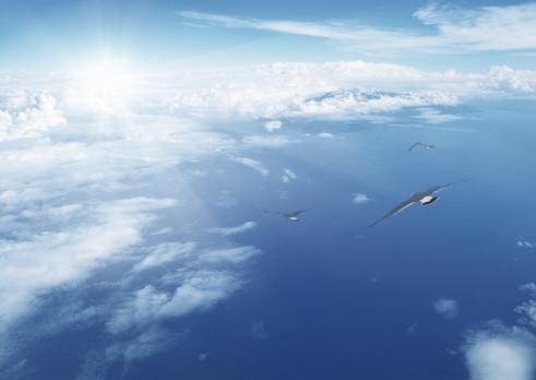 Image processing filter「Flying birds against blue sky」:スマホ壁紙(16)