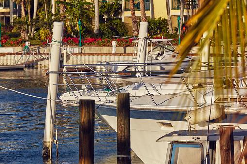 リゾート「Moored boats surrounded by coconut palms in a Caribbean marina.」:スマホ壁紙(2)