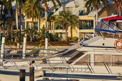リゾート「Moored boats surrounded by coconut palms in a Caribbean marina.」:スマホ壁紙(4)