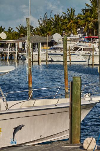リゾート「Moored boats surrounded by coconut palms in a Caribbean marina.」:スマホ壁紙(5)
