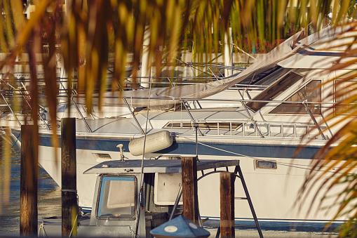 リゾート「Moored boats surrounded by coconut palms in a Caribbean marina.」:スマホ壁紙(3)