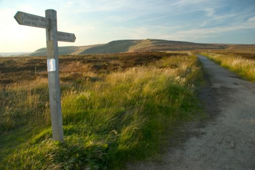 Country Road「Moorland wooden signpost in grassy field」:スマホ壁紙(4)