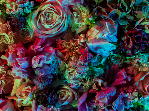 Floral Pattern「Colourful and vibrant floral arrangement with dew」:スマホ壁紙(3)