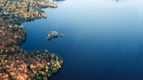 Boreal Forest「Colourful autumn forest and blue lake, aerial top drone view」:スマホ壁紙(7)