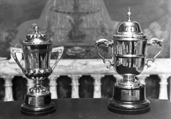Award「Cheltenham Cup」:写真・画像(10)[壁紙.com]