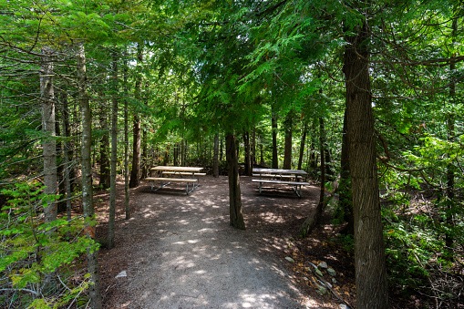 Lake Huron「Picnic tables at the end of a footpath in Fathom Five National Park, Ontario.」:スマホ壁紙(18)