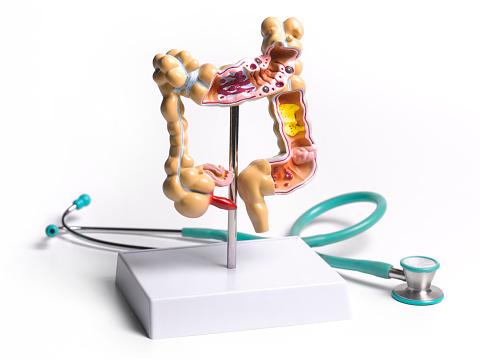 Indigestion「Common pathologies」:スマホ壁紙(6)