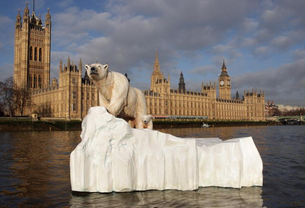 Polar Bear「Giant Polar Bear Is Floated Down The Thames」:写真・画像(4)[壁紙.com]