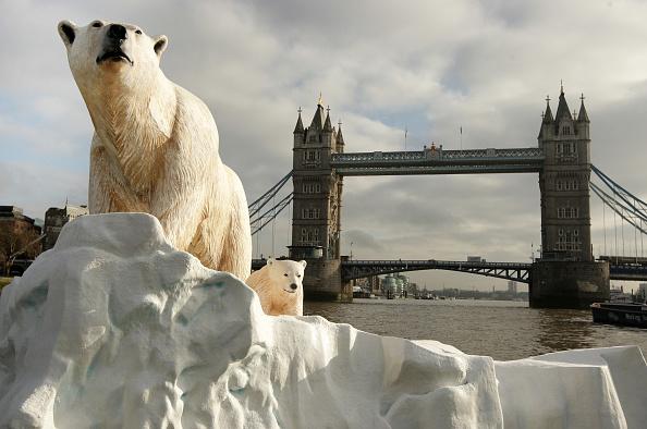 Bear Cub「Giant Polar Bear Is Floated Down The Thames」:写真・画像(14)[壁紙.com]
