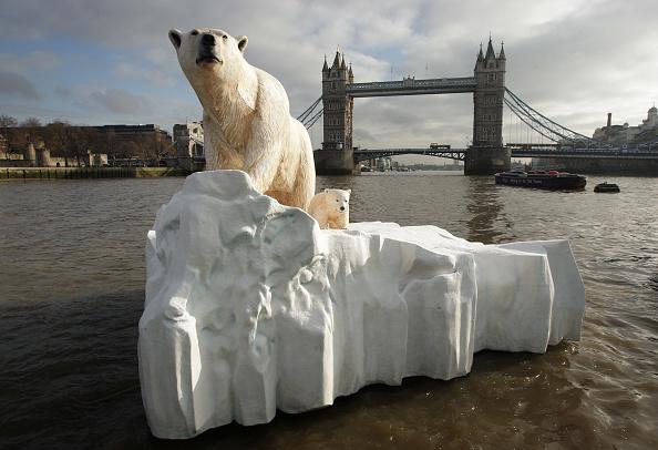 Ice Sculpture「Giant Polar Bear Is Floated Down The Thames」:写真・画像(7)[壁紙.com]