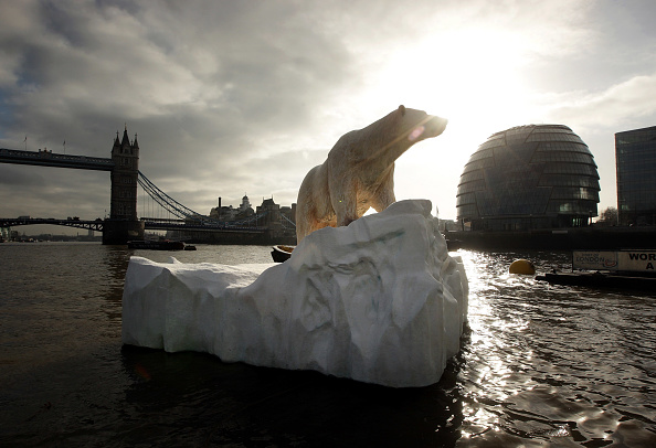 Ice Sculpture「Giant Polar Bear Is Floated Down The Thames」:写真・画像(2)[壁紙.com]