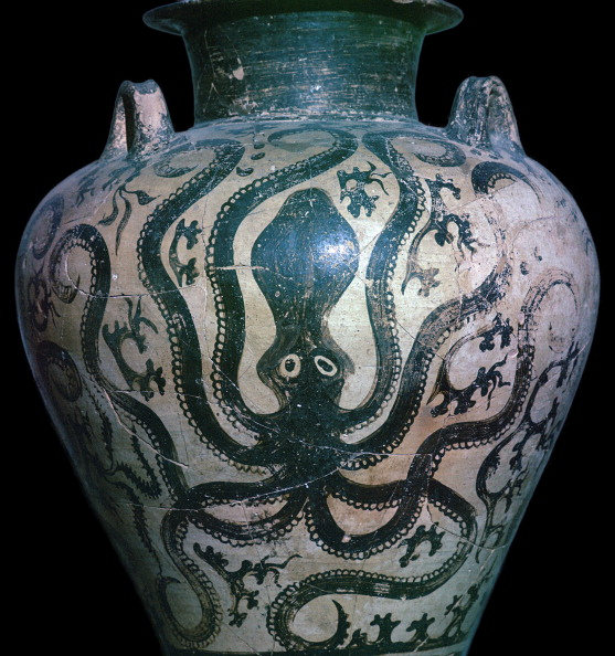 Octopus「Mycenaean amphora with an octopus, 15th century.」:写真・画像(17)[壁紙.com]