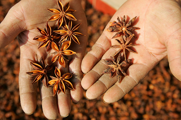 Star Anise「Chinese Fruit Star Anise Becomes Secret Weapon Against Bird Flu」:写真・画像(7)[壁紙.com]