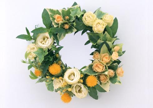花「Wreath」:スマホ壁紙(13)