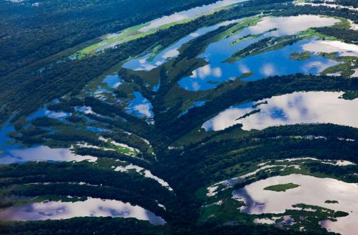 Amazon Rainforest「Aerial of small winding river and tree savannah」:スマホ壁紙(16)