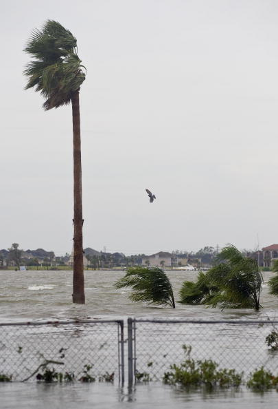 Hurricane Ike「Texas Gulf Coast Cleans Up After Hurricane Ike」:写真・画像(18)[壁紙.com]