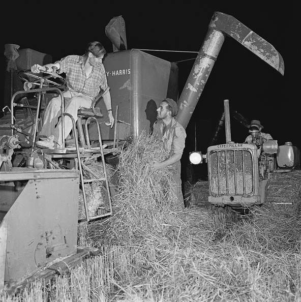 Combine Harvester「Night Harvesting」:写真・画像(11)[壁紙.com]