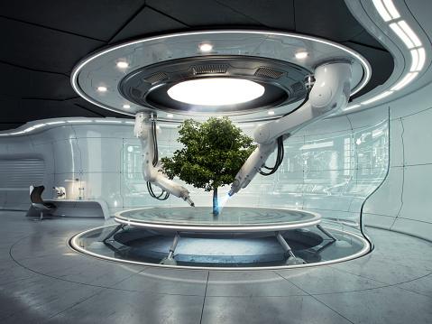 Social Issues「Futurelab Baum quer」:スマホ壁紙(17)