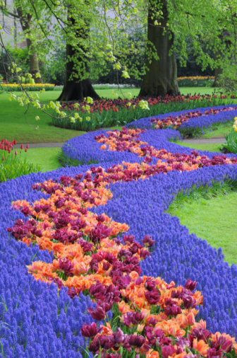 Keukenhof Gardens「Springtime Garden Design.」:スマホ壁紙(19)