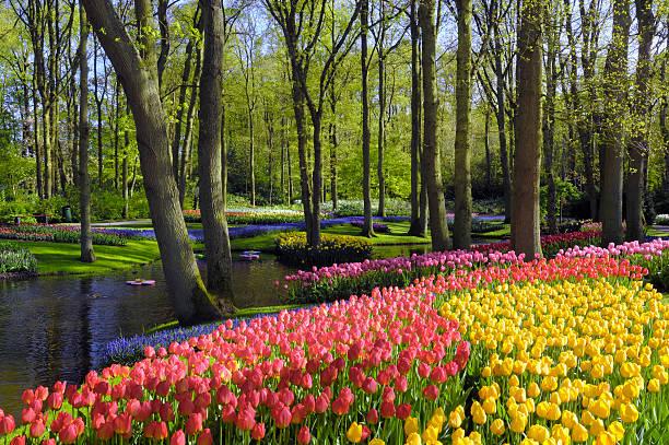Springtime Garden Design :スマホ壁紙(壁紙.com)