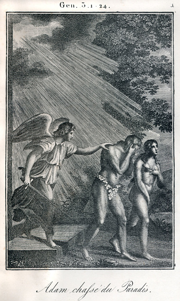 Garden Of Eden - Old Testament「Bible, Adam and Eve being banished from Paradise / Garden of Eden.」:写真・画像(14)[壁紙.com]
