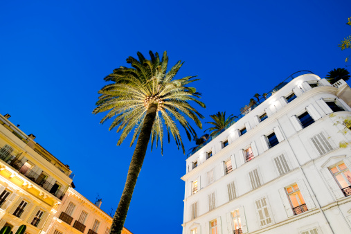 France「hotel facade and palm tree at sunset in Cannes」:スマホ壁紙(5)