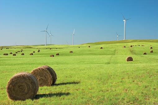 Wind Turbine「Hay bales in a green field with wind turbines against a blue sky」:スマホ壁紙(11)