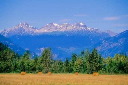 Pemberton「Hay Bales In Field, Pemberton, With Mountains Behind」:スマホ壁紙(12)