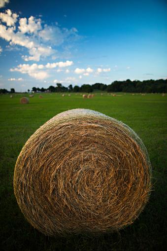 Arkansas「Hay bales in a Arkansas Field at sunrise」:スマホ壁紙(18)
