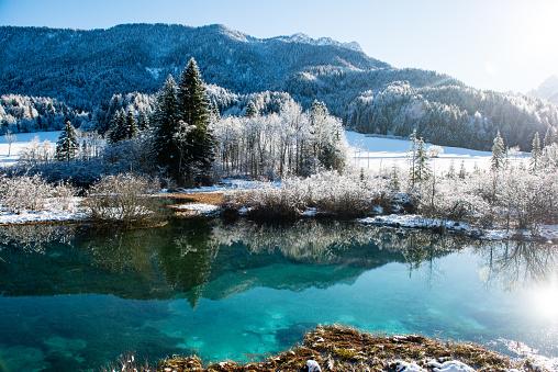 Julian Alps「Zelenci in Winter」:スマホ壁紙(6)