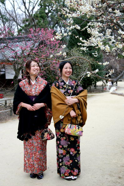 梅の花「Plum Blossom At Kitano Tenmangu Shrine」:写真・画像(5)[壁紙.com]