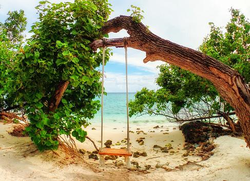 インド洋「Swing on the beach, Fiholhohi island, Kaafu, Maldives」:スマホ壁紙(17)