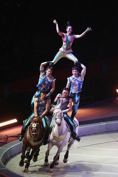 Bruce Bennett「Ringling Bros Barnum and Bailey Circus Holds Final Show」:写真・画像(0)[壁紙.com]