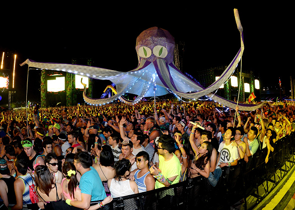 Octopus「17th Annual Electric Daisy Carnival - Day 1」:写真・画像(16)[壁紙.com]