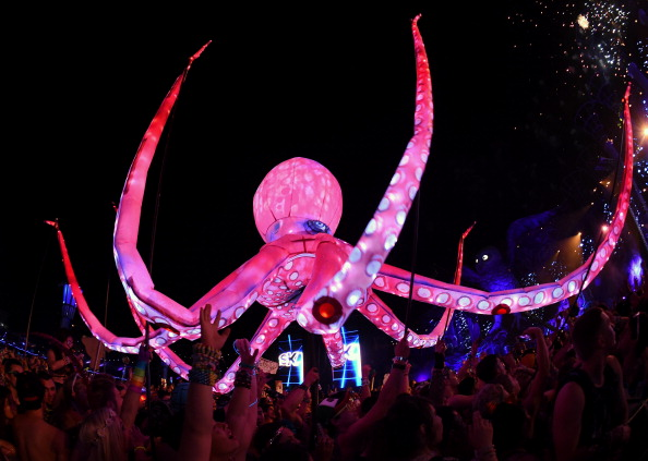 Octopus「18th Annual Electric Daisy Carnival - Day 2」:写真・画像(8)[壁紙.com]