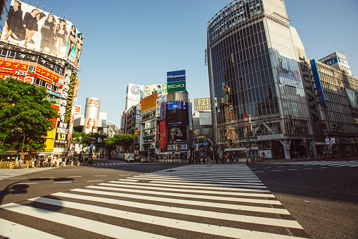 Shibuya Ward「Empty Shibuya crossing in the morning, Tokyo, Japan」:スマホ壁紙(0)