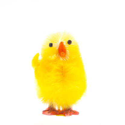 Easter「Easter chick isolated on white」:スマホ壁紙(1)